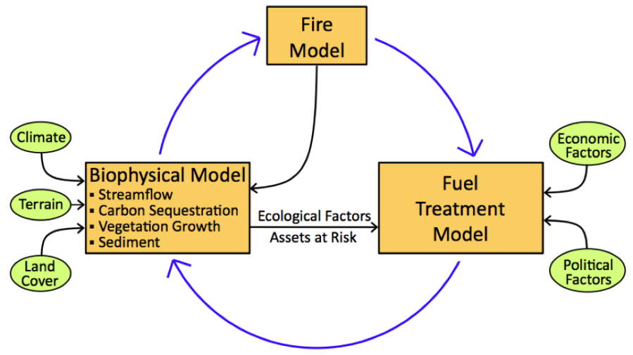 model linkages